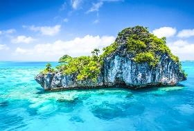畅游大海,拥抱珊瑚与热带鱼