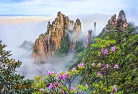 海外旅行社最新南昌到阳光海岸、东海岸旅游线路,高空栈道景区