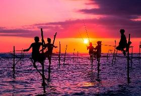 斯里兰卡8日游  江西到斯里兰卡旅游  编号:449